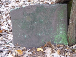 Thompson Wells Lot #44: Elizabeth's headstone