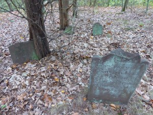 Thompson Wells Lot #44: Headstones up from, footstones behind