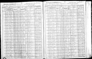1905 New York State Census: Dannemora State Hospital for Insane Convicts